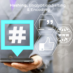 Hashing,Encoding,Encryption,Salting