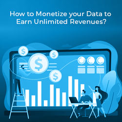 monetize your data_guide