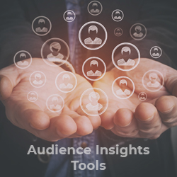 audience insights tools